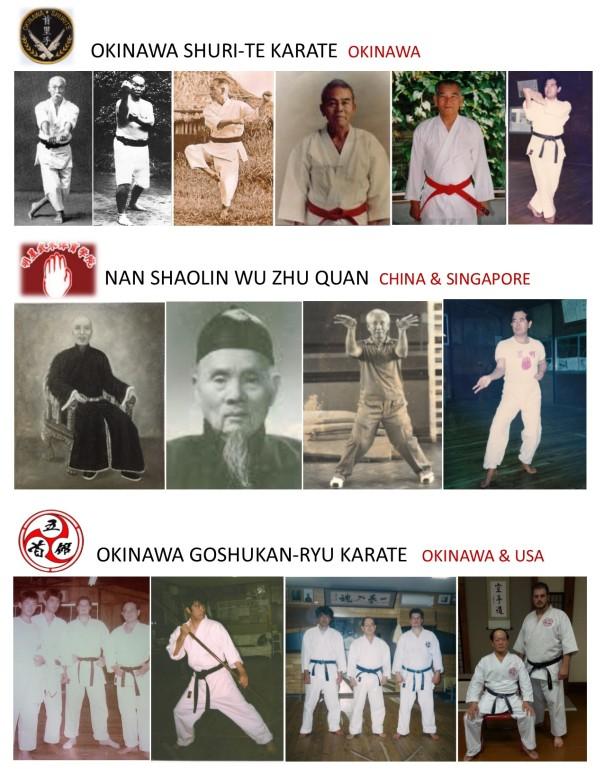 Goshukan_lineage_photochart